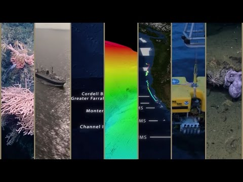 Expedition in 60 Seconds: Mapping West Coast National Marine Sanctuaries