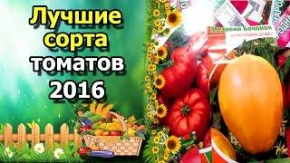 🍅Лучшие сорта томатов 2016. Любимые, вкусные и урожайные помидоры.(В этом видео я расскажу о понравившихся новых сортах томатов, которые я посадила в 2016 году. Самые мои лучшие,..., 2016-12-20T15:49:58.000Z)