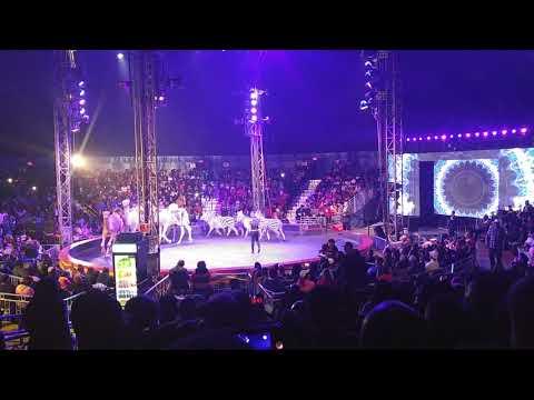 Universal Soul Circus