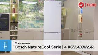 Обзор холодильника Bosch NatureCool Serie | 4 KGV36XW23R