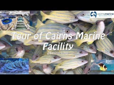 Cairns Marine Facility Tour - Long Video