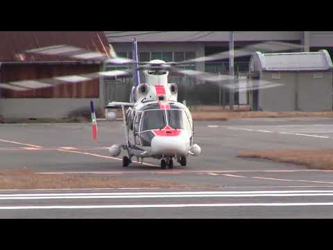 JA61NH AS365N2 ANH(All Nippon Helicopter)