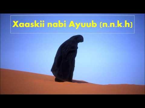 Liyaa, xaaskii nabi Ayuub