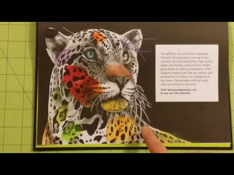 the-intricate-ink-animals-in-detail-by-tim-jeffs-adult-coloring-book-review-flip-through