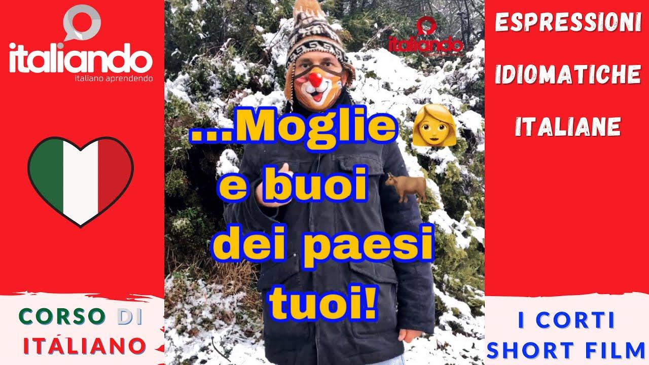 Espressioni idiomatiche: Moglie e buoi dei paesi tuoi! italiando Corso di italiano online