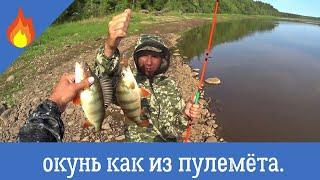 Рыбалка 2021 окунь жирует бешенный клёв окуня