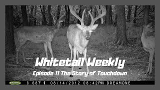 The Story of Touchdown. Whitetail Wednesday Episode 11