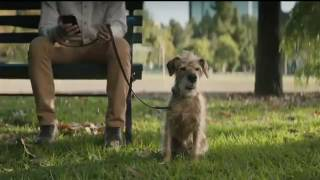 dog years december t mobile super bowl 2017 li nfl 51 ad tv commercial