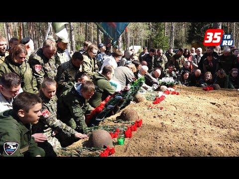 Останки 68 бойцов обнаружили во время экспедиции вологодские поисковики