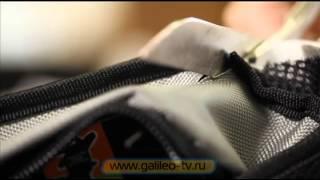 Grizzly by Galileo(, 2012-09-27T06:44:17.000Z)