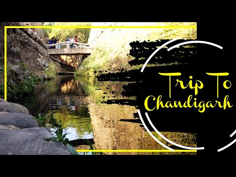 Trip To Chandigarh | Weekend trip near Delhi