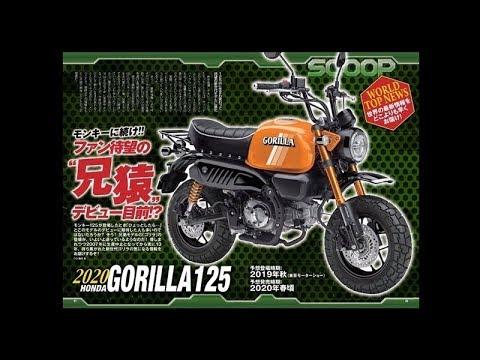 Gorilla 2020