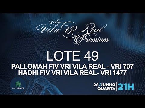 LOTE 49 (VRI 707/VRI 1477)