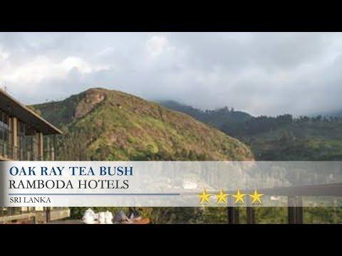 Oak Ray Tea Bush - Ramboda Hotels, Sri Lanka