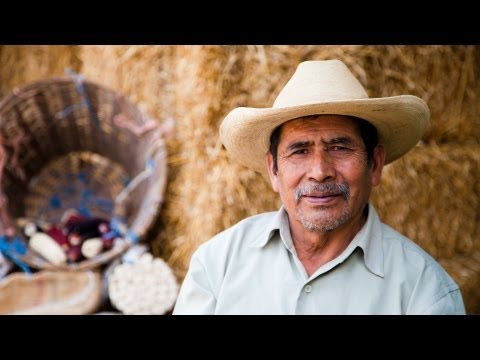 Grain for the People | Mexico's Timeless Maize