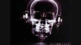 DJ Z-Trip & DJ P -  Passing Me By/Love is a Battlefield Mashup