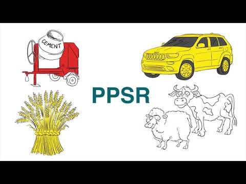 PPSR - PowerPoint Presentation