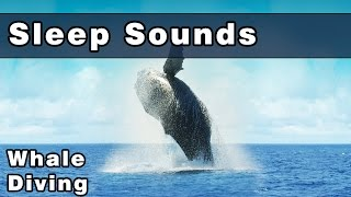 Peaceful SLEEP SOUNDS: Diving With Whales, Whale Sounds, Whales, Ocean, Sounds For Sleep, 10 Hours