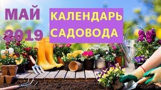 Лунный КАЛЕНДАРЬ САДОВОДА 🌱 ПОСЕВНОЙ календарь на май 2019