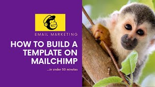 How To Build a Template |  MailChimp