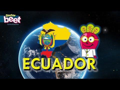 🇪🇨 ECUADOR | MAPA PAIS CAPITAL BANDERA Geo Estados del Mundo America Sur Quito Clases Infantiles