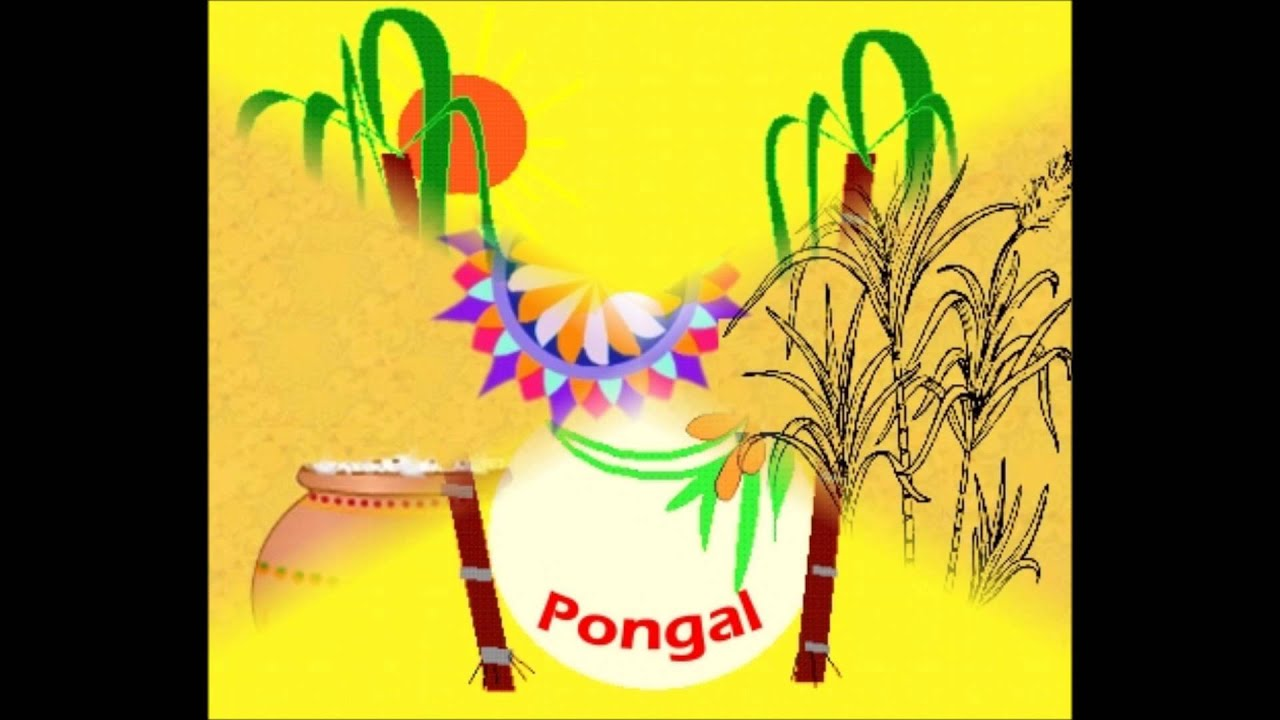 Pongal Card Greetings Wishes photo ecard à ªà¯Šà ™à¯à •à ²à¯