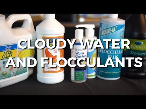 Cloudy Water And Flocculants