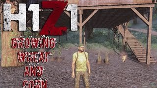 H1Z1 Just Survive Gameplay Growing Wheat and Corn