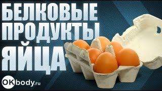 Продукты богатые белком. Куриные яйца.
