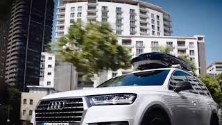 Lada frigorifică Audi