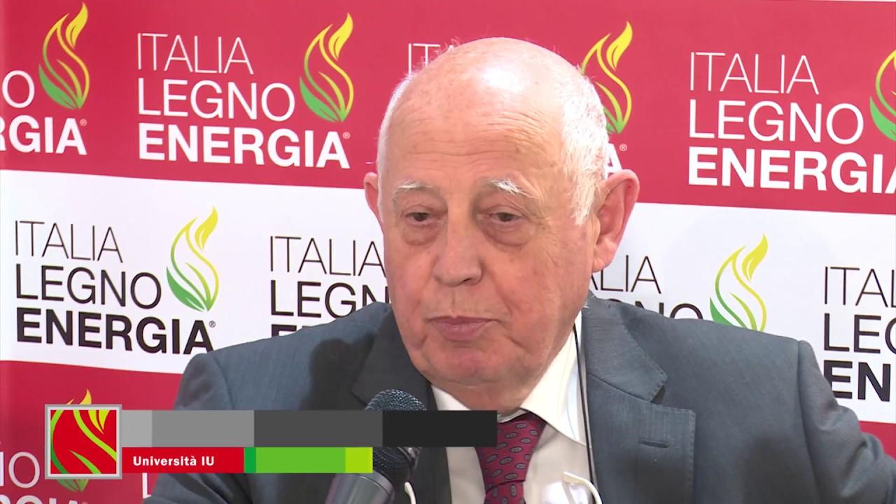 Italia legno energia 2017 prof franco laner youtube for Italia legno energia