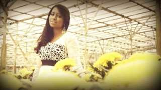 Ninaithu ~ Official Music Video [2013] ~ Thyivya Kalaiselvan Feat Shane X