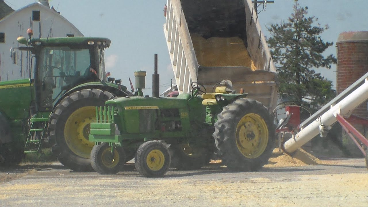 Rolling High Moisture Corn for Cattle Feed