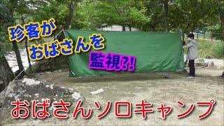 【おばさんソロキャンプ】67 みんな!みんな!生きているんだ友達なんだ~♪ 梅雨の晴れ間に...いざ!