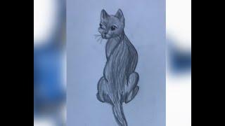 Как рисовать кошку поэтапно карандашом для детей. Стикботы Сашка и Пашка
