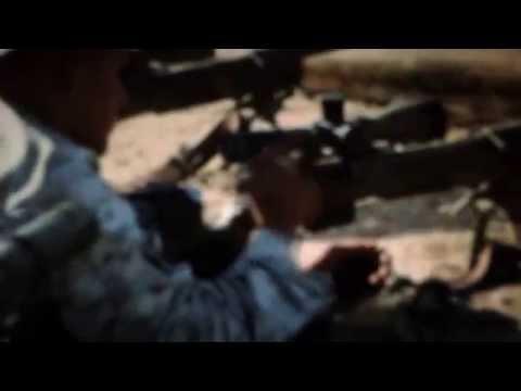 Surviving the cut marine sniper