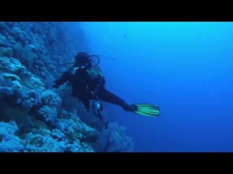 45 meter deep dive - Elphinstone Reef, Red Sea