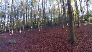 Beech Wood Flight 2013