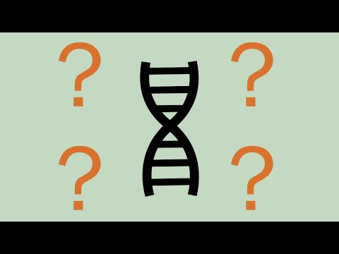 The ethics of CRISPR gene editing with Jennifer Doudna
