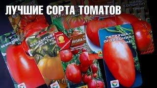 видео томат малиновый звон характеристика
