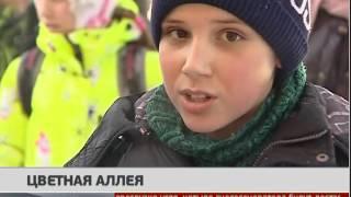 Цветная аллея. Новости 24/01/2017. GuberniaTV