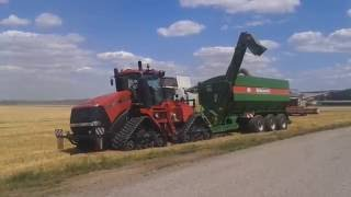 Claas Lexion 770 & Big Harvester Day   Case Quadtrac 600 + Bergmann Compiler   Farming