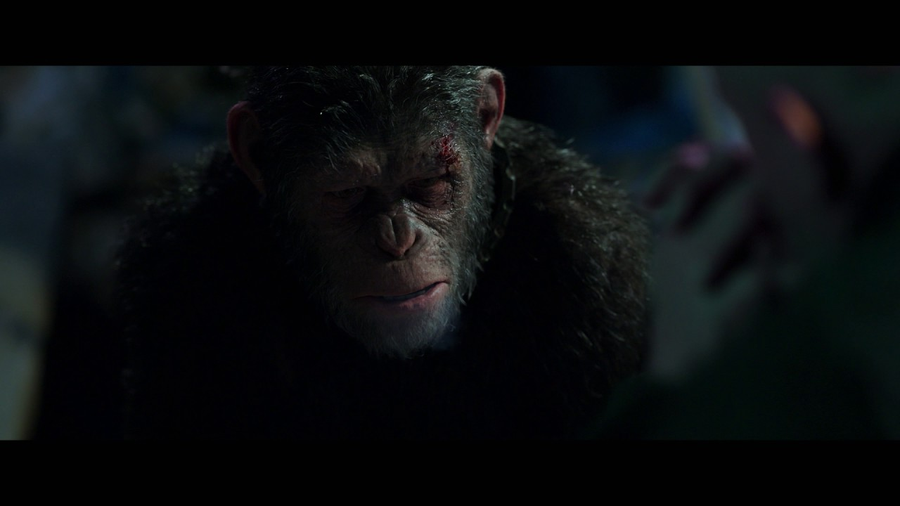 Download War for the Planet of the Apes   'I Came For You'   Official HD Clip 2017