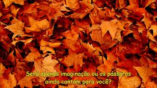 Ed Sheeran - Autumn Leaves - Tradução