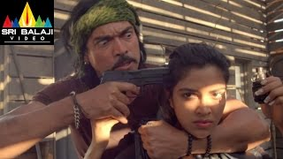 Iddarammayilatho Movie Climax Fight Scene   Allu Arjun, Amala Paul, Catherine   Sri Balaji Video