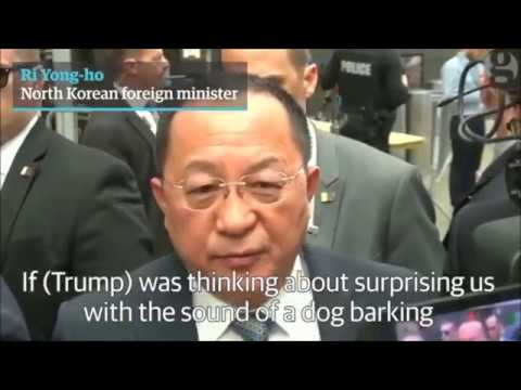 The Foreign Minister of North Korea Mocks Trump: a Barking Dog!