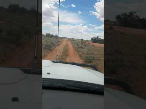 Outback Oz,near Broken Hill NSW.
