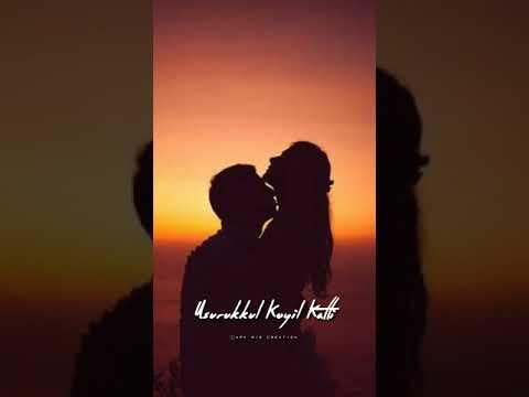 💞tamil Love Status💞manasellam Panthalittu 💞cover Song💞whatsapp Status💞apk Mis Creation💞