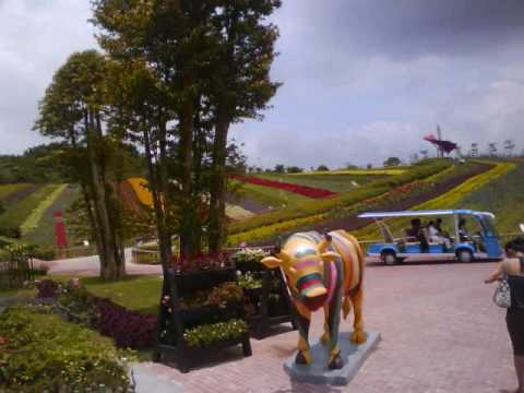 My trip to Shenzhen, China!