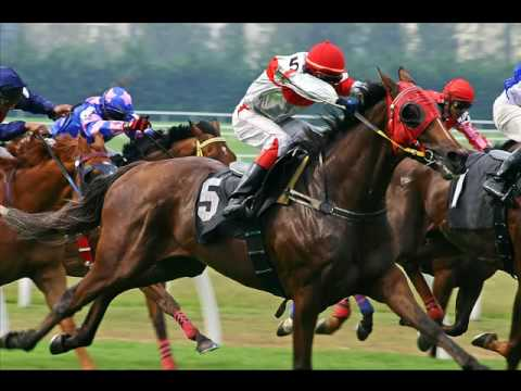 Horse Betting Systems